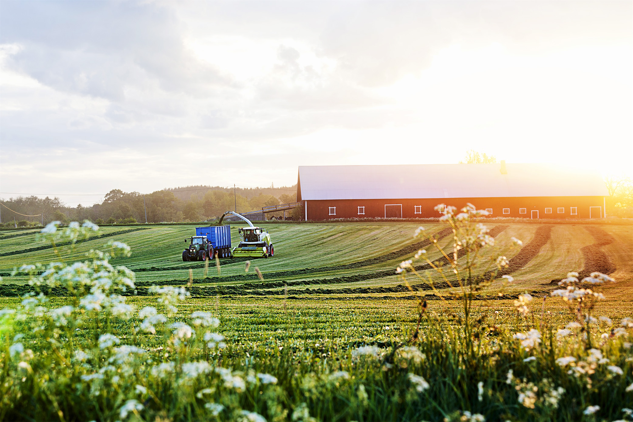 Farmer-working-on-the-field