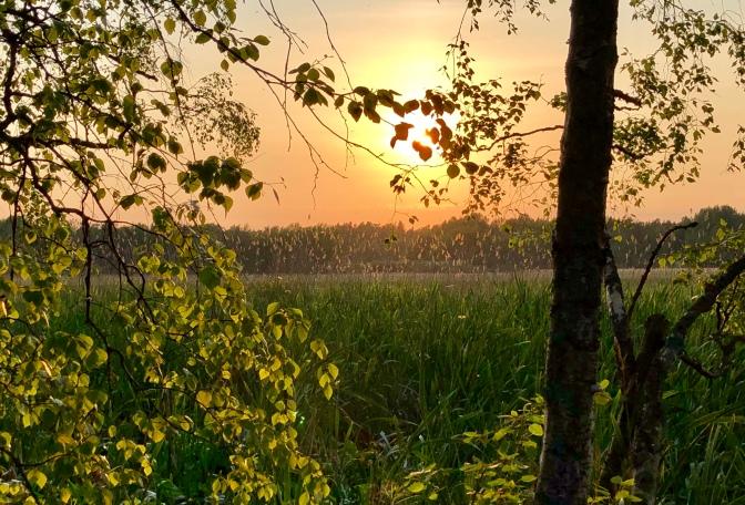 Espoo Aalto Otaniemi campus Sommer sunset